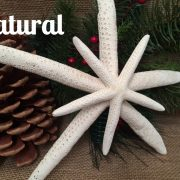 double-finger-starfish-tree-topper-1