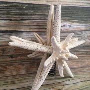 double-mirrored-starfish-tree-topper-8