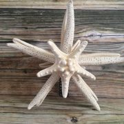 double-mirrored-starfish-tree-topper-9