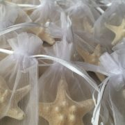 starfish-magnets3