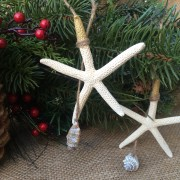 Starfish Ornaments, Gold Tip3
