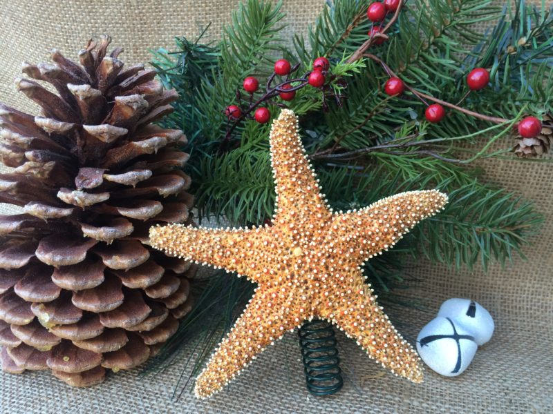 Sugar Starfish Tree Topper