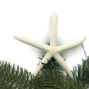 Finger Starfish Tree Topper 1