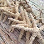 13-foot-starfish-garland-1