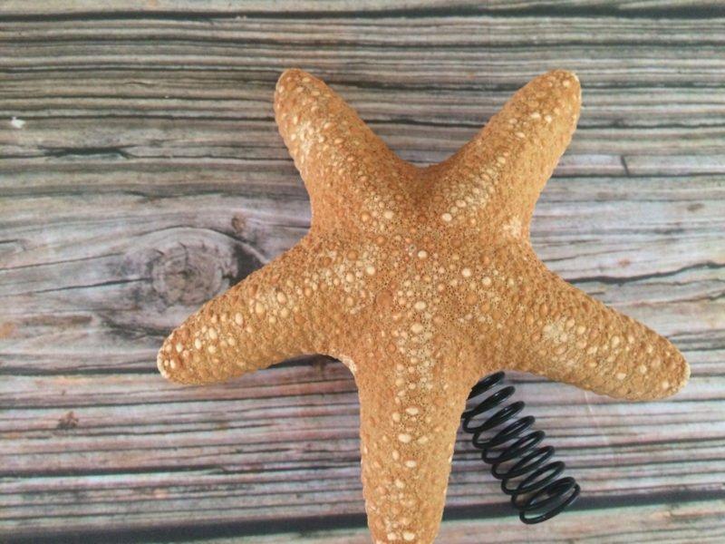 Jungle Starfish Tree Topper 2