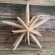 double-mirrored-starfish-tree-topper-1