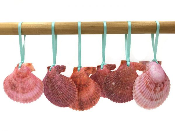 Tropical Red Seashell Ornaments
