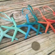 Tropical Starfish Ornaments 4