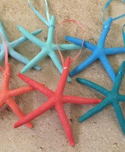 Tropical Colorful Starfish Ornaments
