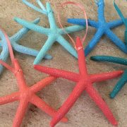 Tropical Starfish Ornaments 6
