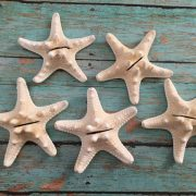 Starfish Place Card holders 2