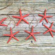 Coral Starfish Garland