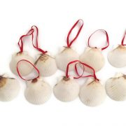 White Seashells Ornaments, 10 red ribbon