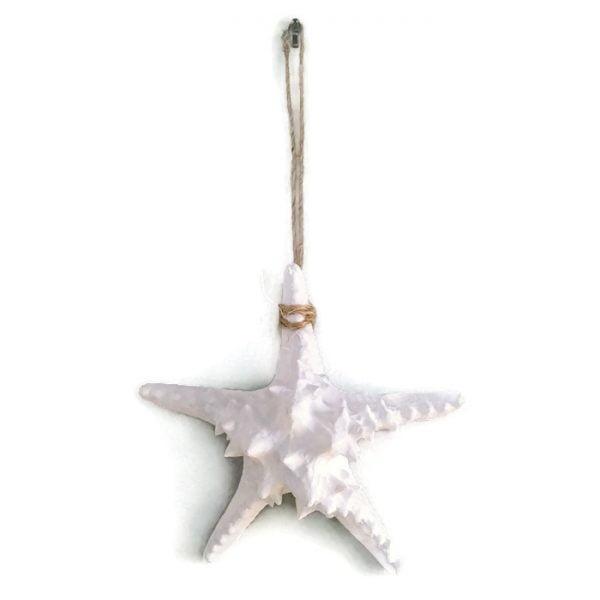 Hanging_white_starfish_4
