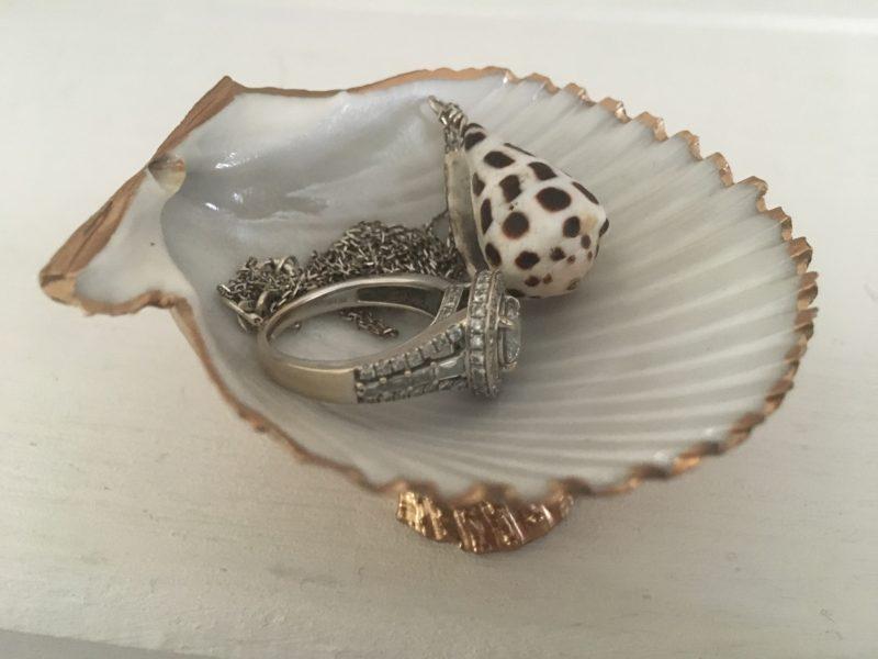 Conch seashell trinket dish