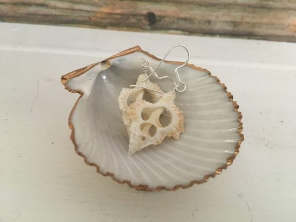 Cut seashell earrings 1
