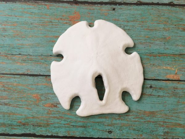 Sand Dollar Wall Art 2