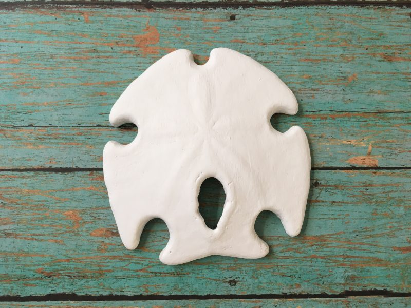Sand Dollar Wall Art & Sand Dollar Wall Art Beach Decor | Sea 2 Land Designs