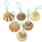 Tropical Seashell Ornaments 6