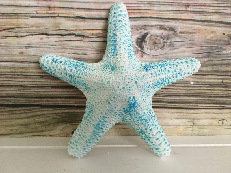 Tropical Large White Starfish Wall Hanging Sea 2 Land Designs