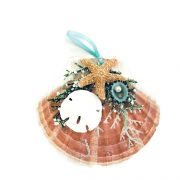 Unique_seashell_ornament_with_sugar_starfish
