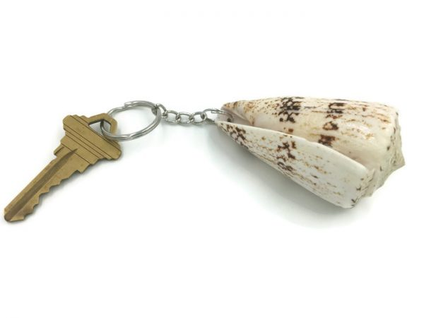 White and Brown Cone Shell Key Ring 4