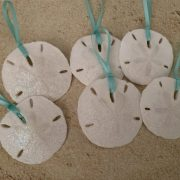 Medium Sized Sand Dollar Ornaments