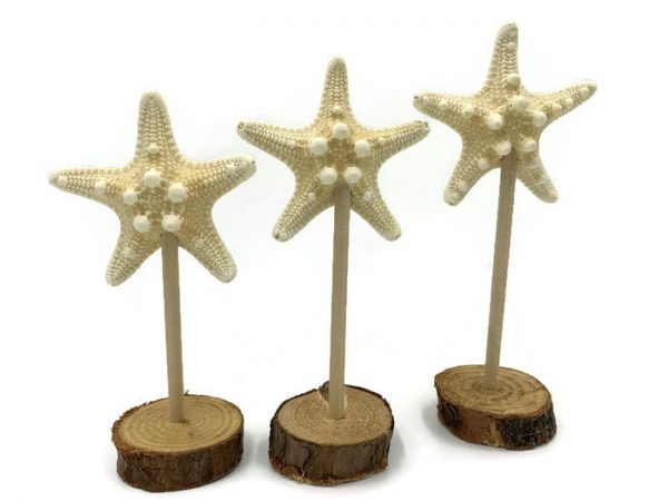 Set of 3 knobby starfish statues