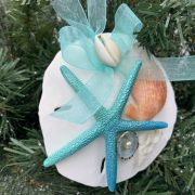 Unique Sand Dollar and Seashell Ornament 2