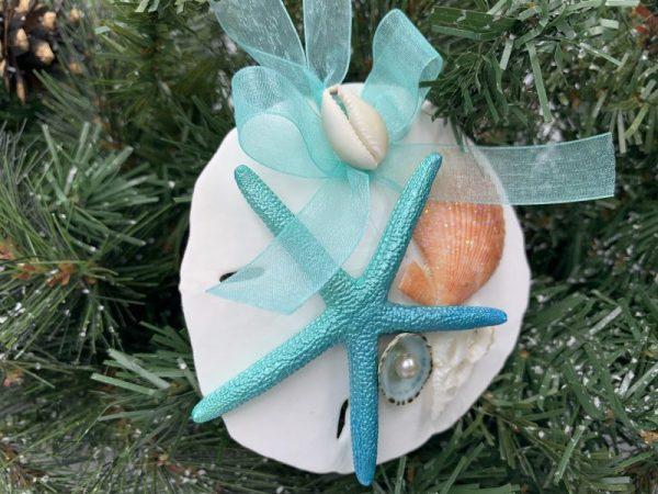 Unique Sand Dollar and Seashell Ornament 2