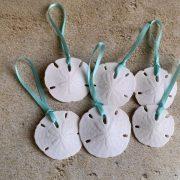 Mini Natural Sand Dollar Ornaments