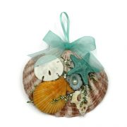 Tropical Seashell Ornament