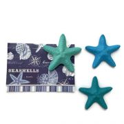 Turquoise starfish magnets set of 3