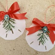 Holiday Sand Dollar Ornament with Coral Ribbon