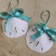 Natural Sand Dollar Ornament with Turquoise Bow 1