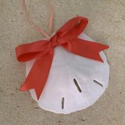 Sand Dollar Ornament with Coral Ribbon