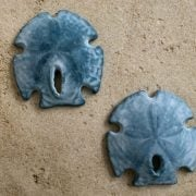 Blue Turquoise Sand Dollar Wall Hanging