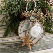 Sand Dollar Ball Ornament 2