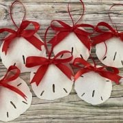 Natural SAnd Dollar with Red Bow 2
