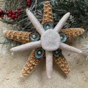 Mini Sugar with Pearl Starfish Sea Cookie Tree Topper 1
