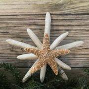 triple with sugar starfish