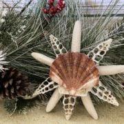 Cut Seashell Christmas Tree Topper